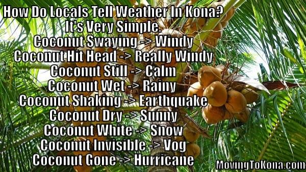 Average Weather Rainfall For Kona