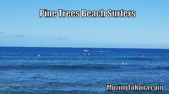 Pine Trees Beach